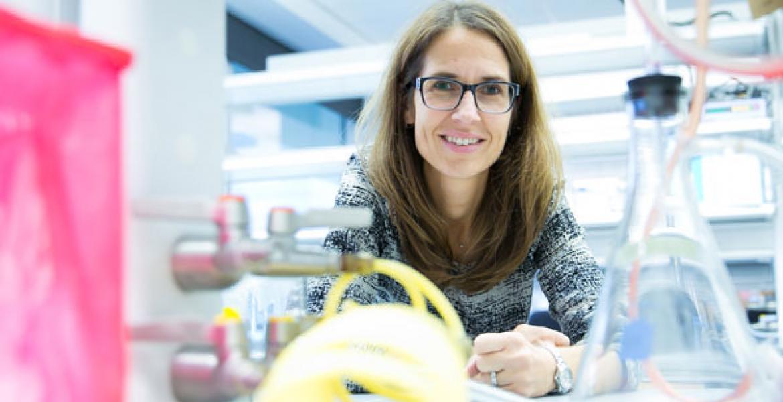 Claudia Fischbach